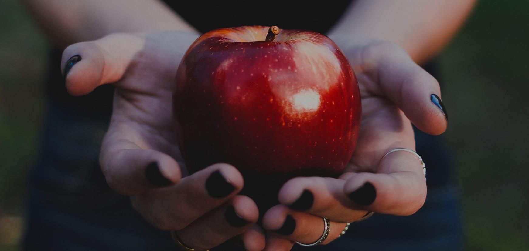 Roter Apfel aus dem Alten Land